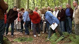 Filmplakat Übergang: Zukunftsfriedhof Wald