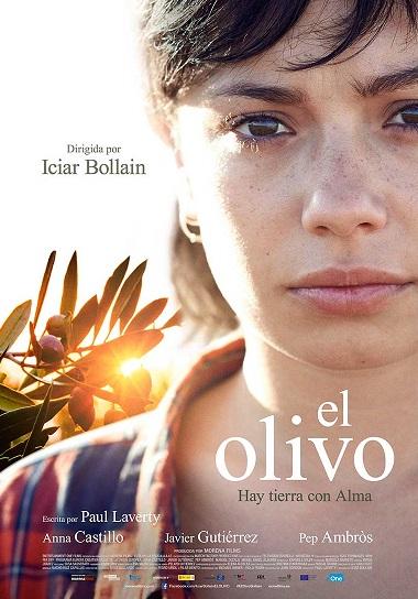 Filmplakat EL OLIVO - Der Olivenbaum - span. OmU