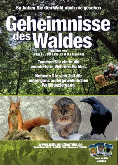 Filmplakat Geheimnisse des Waldes