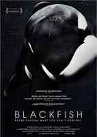 Filmplakat Blackfish - OmU