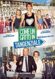 Filmplakat Come un Gatto in Tangenziale - Wie eine Katze auf der Autobahn - ital. OmU